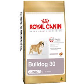 bulldog-30-junior_large