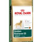 golden-retriever-25-adult_large