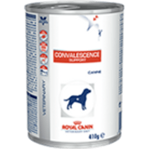 convalescence-support_productImage