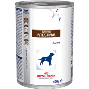 gastro-intestinal-wet_large