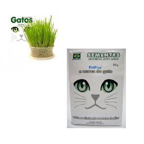 semente-graminha-gatos-pet-pira