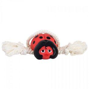 joana-com-corda-brinquedos-caes