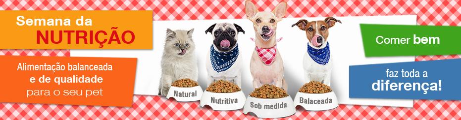 Banner Nutrição 18/08