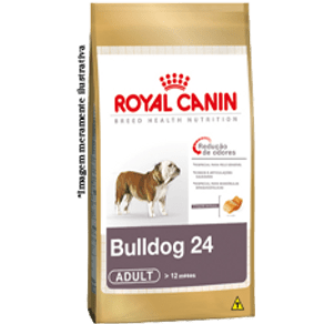 bulldog-24-adult_large