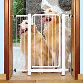 door-dog