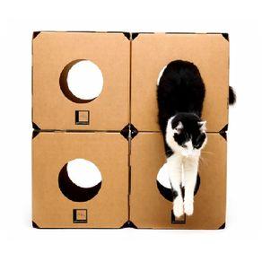 cubo-gato