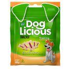 dog-licious-trainning