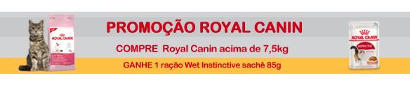 MINIBANNER-ROYAL-CANIN-GATOS