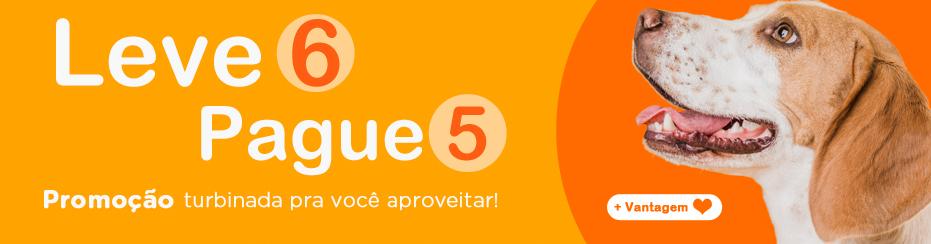 LEVE-6-PAGUE-5-2020