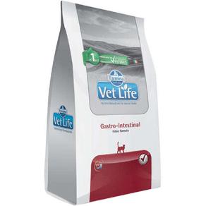 gastro-gato-vet-life