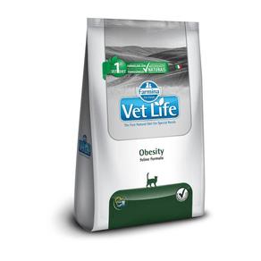 obesity-vet-life-gato